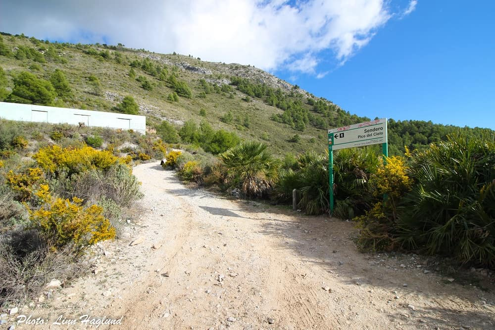 End of dirt road and start of forest trail
