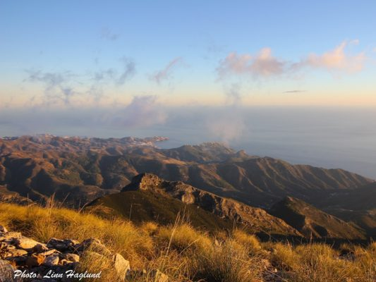 Sunset from Pico del Cielo