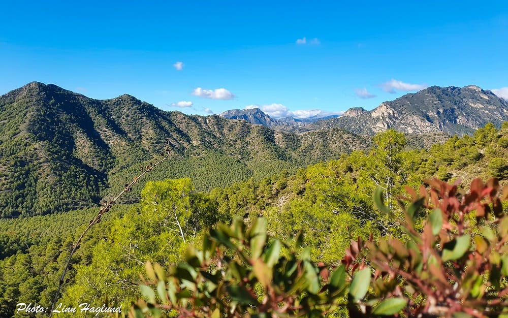 Views from the dirt trail on the first part to hike Pico del Cielo