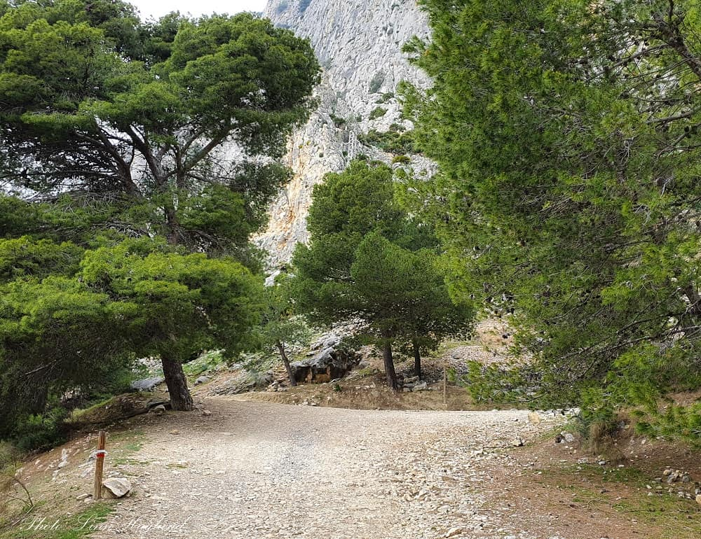 Where you take to the left from the track to the trail. There is a small sign saying Escalera Arabe 0.6