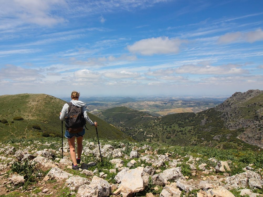 Hiking trails for beginners