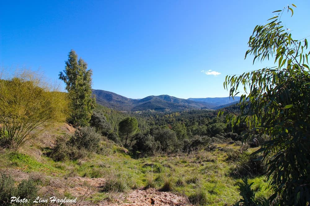 Ruta de los Venados is one of the easiest hikes for beginners in Andalucia