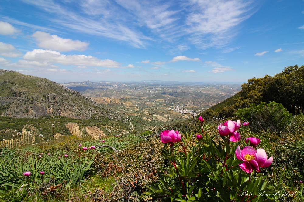 Seville Province - Andalucia Hiking